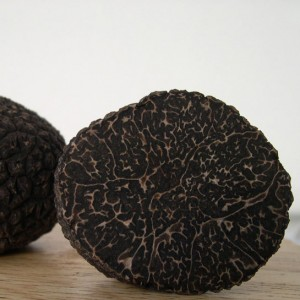 Black Winter Truffle (Tuber Melanosporum Vitt.)